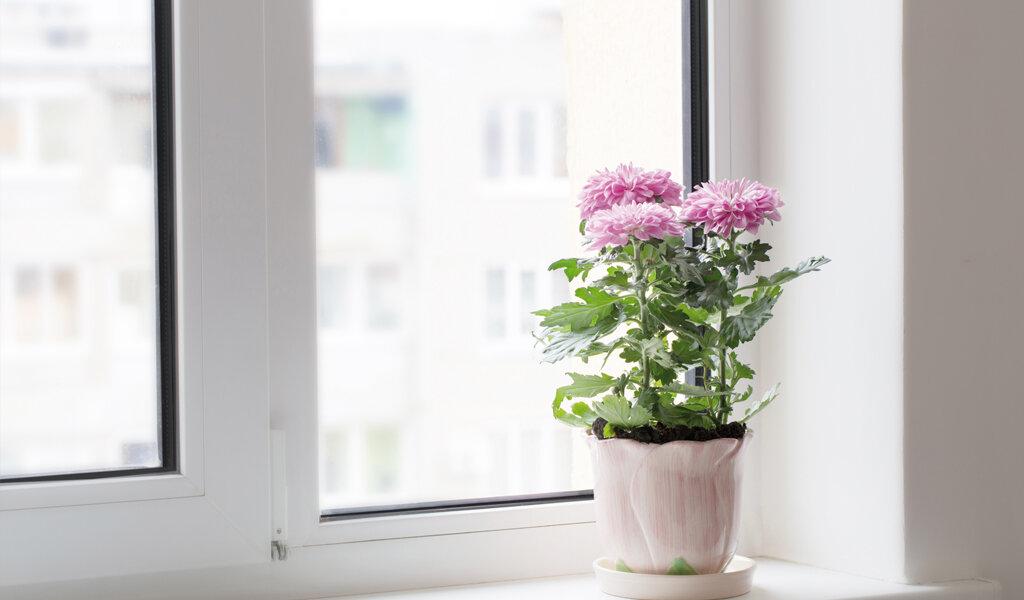Fenêtre avec isolation phonique QFORT